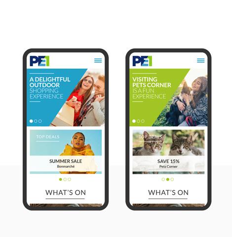 pe1_homepage2